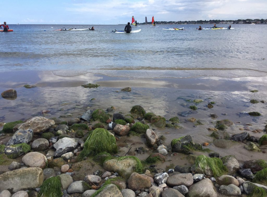 Windsurfen in Kiel am Falkensteiner Strand